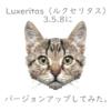 Luxeritas(ルクセリタス)3.5.8にバージョンアップしてみた。